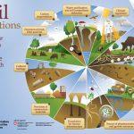 Занимљиви графички прикази о земљишту