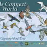 Свјетски дан птица селица