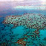 Велики корални гребен